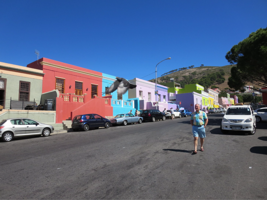 ct pigeon and man in coloured shirt in Bo-Kaap-01